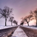 Karlı Yol