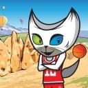 Kayseri - FIBA 2010 Türkiye