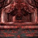 Kırmızı Orman 1