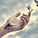 Kuşlar 5