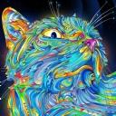 Renkli Kedi