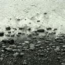 Sahildeki Deniz Taşları