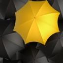 Sarı Şemsiye