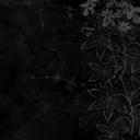 Siyah Ton Çiçekler