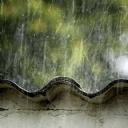 Svoyada Sağnak Yağış