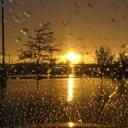 Svoyada Yağmur