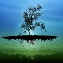 Tasarım Ağaç