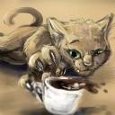 Tasarım Kedi
