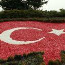 Türk Bayrağı 8