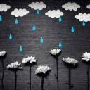 Yağmur Damlaları 4