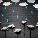 Yağmur Damlaları 5