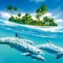 Yunus Balıkları 2