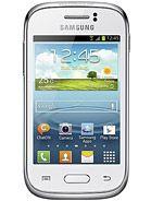 Samsung S6310 Galaxy Young aksesuarları